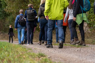 Nahaufnahme von mehreren Füßen, die auf einem Waldweg wandern.
