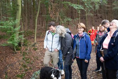 Eine Gruppe von Wanderern mit Hund steht im Herbstwald und lacht.